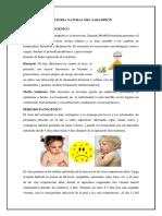 Historia natural del Sarampion.docx