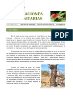 agma_cscv_ifdiciembre_2017.pdf