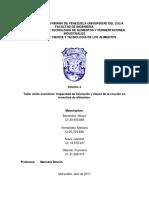 Informe 3 Lixiviacion Equipo 2