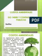costosambientaleselectiva.pptx