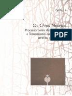 Capítulo 04 Chips Neurais (Sinapse)