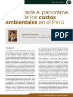 Costos Ambientales en El Peru