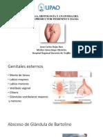Embriología, Histología y Anatomía Del Aparato reproductor femenino