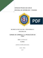 Universidad Privada San Carlos Proyecto