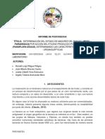 Informe 2. Determinación Del Estado de Madurez Del Banano Por Accion Del Etileno