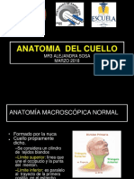 anatomia de cuello.pptx