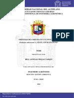 Rojas Tarqui Bill Gonzalo