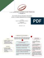 Importancia de Los Estados Financieros