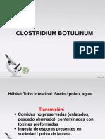 Clostridium s