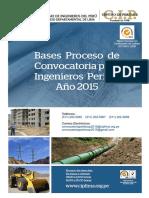 Bases Convocatoria Ingenieros Peritos - Año 2015