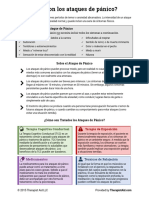 Panic Info Sheet