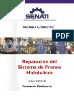 89000284 Reparación de Frenos Hidráulicos