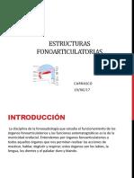 estructuras fonoarticulatorias