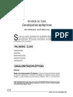 v16n3a4.pdf