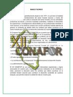 CONAFOR.docx