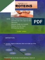 BIO - Protein
