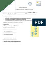 Guía Biomoléculas 8° Básico completa