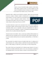 F-2249-Tesis Norha Paucar Calderon