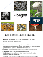 TP HONGOS