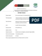 Informe Tecnico Estructura Anatomica