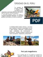 Biodiversidad en El Peru(1)