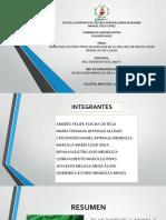 Bases Fundamentales, Frejol de v Gama