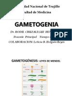 1.GAMETOGENESIS.pptx