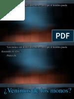 Información evolutiva.pptx
