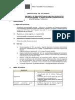 ProcesoCAS0462018GestorProyInfIOGTI (1)