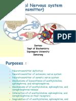 Neurotransmitter Tepi