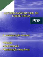 Autodepuração 2007