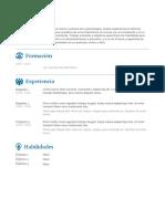 Plantilla Curriculum Vitae Completar 4