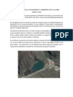 Identificación de La Problemática Ambiental en La Laguna Pajuscocha