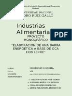 264523373 Proyecto Elaboracion de Barra Energetica a Bas de Oca Con Leche PDF