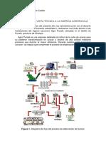 Informe de La Vista Técnica a La Empresa Agropucalá