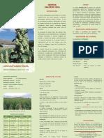 F-QUINUA-SALCEDO-INIA.pdf