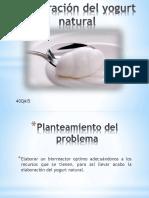 Presentacion Del Yogurt