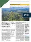 Bosques Contra El Cambio Climático