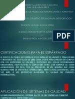 Certificaciones Del Espárrago