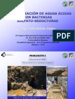 Biorremediacion de Aguas Acidas - Huánuco