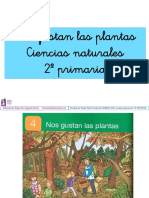 Ciencias Naturales Tema 4 Nos Gustan Las Plantas