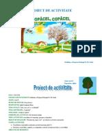 Proiect-Stiinte