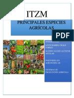 Tema 2 de Prodcuccion Agricola