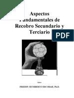 Recobro Mejorado.pdf