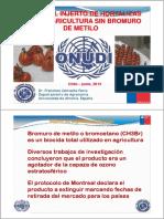 Injertos.pdf