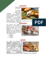 GLUCIDOS.docx