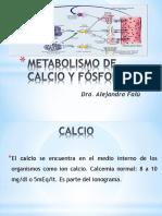Metabolismo de Calcio y Fosforo
