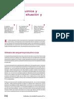Industria Quimica y Petroquimica Situacion y Perspectivas IAE 71