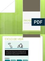 PROYECTOS fases