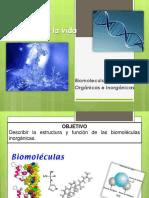 314700758 Biomoleculas Organicas e Inorganicas Ppt